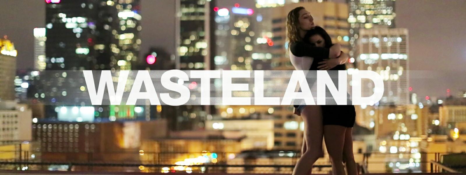 Wasteland Poster Image