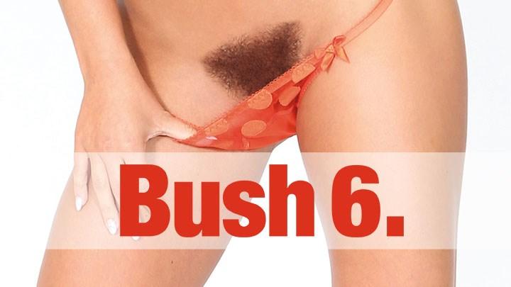 Behind the Scenes of Bush Vol. 6