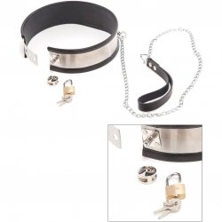 Rapture: Steel Band Leashed Collar - Large