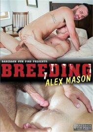 Breeding Alex Mason