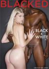Black & White Vol. 7