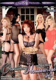 Cheating Housewives 4 (Super Saver)