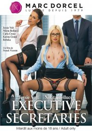 Executive Secretaries Porn Video