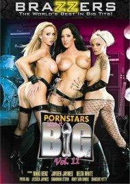 Pornstars Like It Big Vol. 11 Porn Video