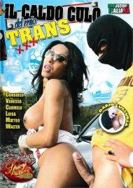 Hot Ass Of My Trans Porn Video
