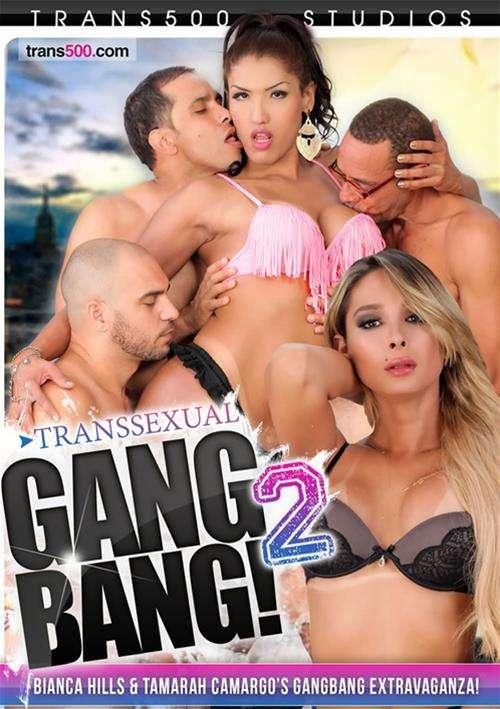 Transsexual Gang Bang 23