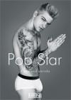 Pop Star: A Gay XXX Parody