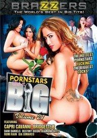 Pornstars Like It Big Vol. 21 Porn Video
