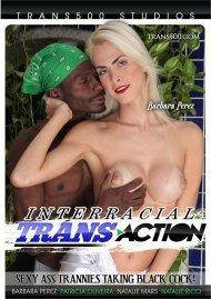 Interracial Trans Action Porn Video