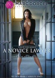 Novice Lawyer, A