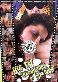 Big Tit Sexcapades of Mr. Dick Porn Video