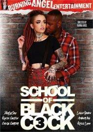 School Of Black Cock 3 Porn Video