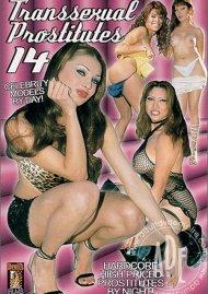 Transsexual Prostitutes 14 Porn Video