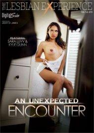An Unexpected Encounter Porn Video