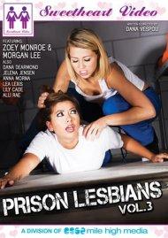 Prison Lesbians Vol. 3 Porn Video