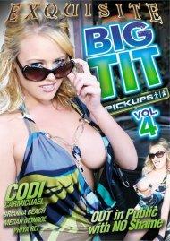 Big Tit Pickups Vol. 4
