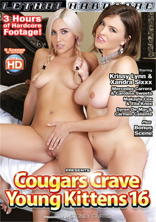 Cougars Crave Young Kittens #16 Boxcover