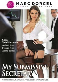 My Submissive Secretary Porn Movie