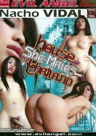 House Of She-Males In Thailand Porn Video