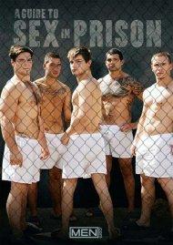 Guide To Sex In Prison, A